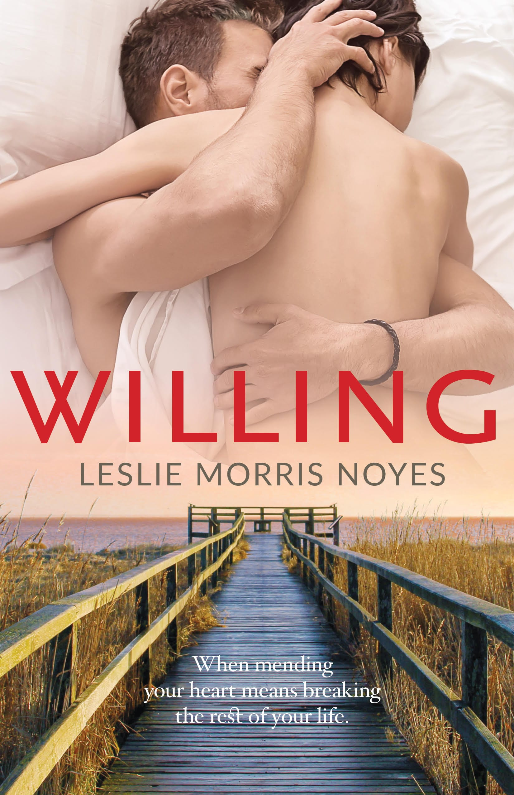 Leslie Morris Noyes - Willing Book Cover